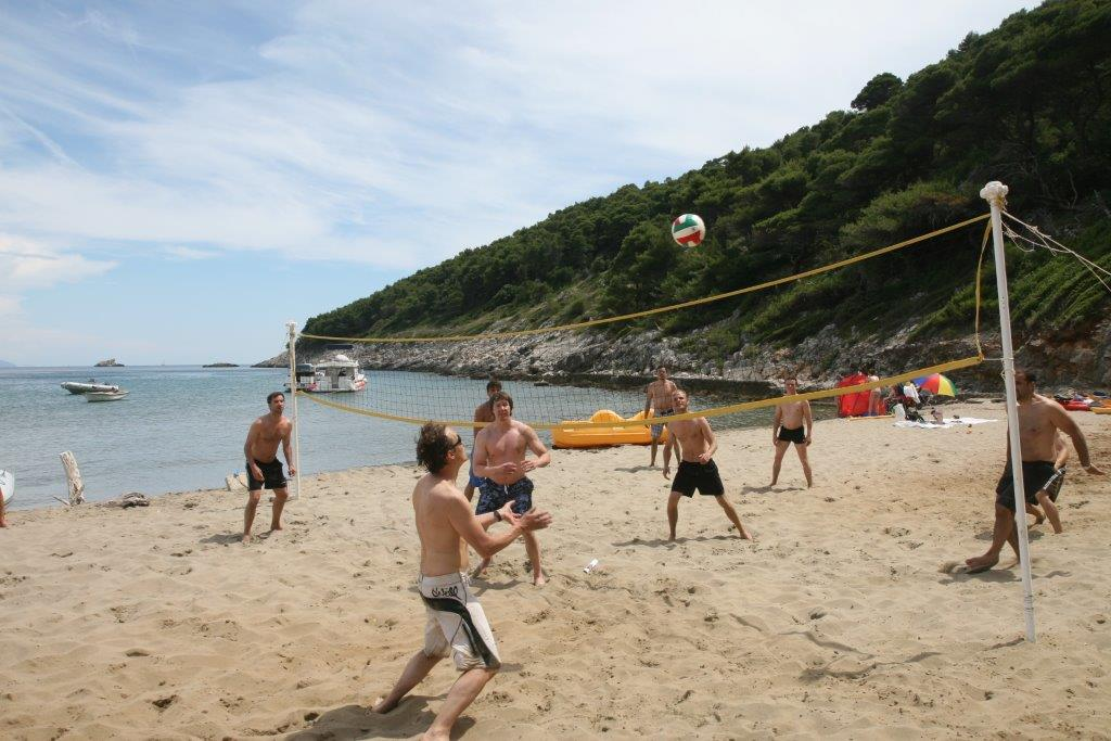 volleyball as activity